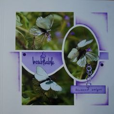 Toute la grâce du papillon | Scrapbooking européen