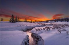 The first track by Jorn Allan Pedersen - #photo #morning #norway #snow #artic #fineart #iloveart #followart ____