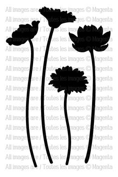 TM151 - Flower Silhouette                                                                                                                                                     More
