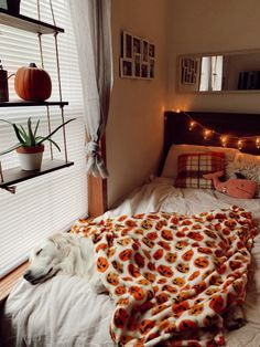 Fall Things, Simple Things, Room Ideas Bedroom, Bedroom Inspo, Fall Is Coming, Autumn Cozy, Room Goals, Fall Baby, Fall Pictures