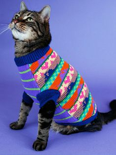 My cat obviously needs this sweater.