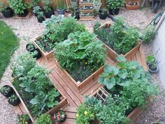 raised garden beds colorado