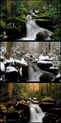 3 different seasons