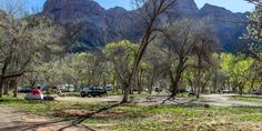 South Campground, Zion National Park.- South Campground show up 8am-noon to try for an open spot, shade available, near shuttle, by river better than by road if choice.  No  reservations (whereas Watchman is reserved 6 months in advance and more for RVs).