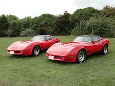 Our vettes