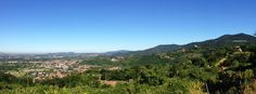 Cà del Vént is located on top of the clay and limestone - rich hills of the Campiani of Cellatica (350/430 m a.s.l.), a protected park on the eastern boundary of the Franciacorta region(Lombardy)....