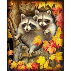 full Diamond Embroidery Beads Raccoon and leaves icon Cross Stitch Diamond Painting DIY Diamond Mosaic Picture of Rhinestones Raccoon Art, Cute Raccoon, Raccoon Family, Cross Paintings, Animal Paintings, Diy Painting, Painting & Drawing, Animals Beautiful, Cute Animals