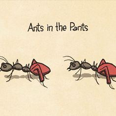 Ants in the Pants Punny Puns, Puns Jokes, Cute Puns, Chicken Jokes, English Idioms, English Lessons, English Grammar, Prepositional Phrases, Idiomatic Expressions