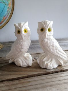 Vintage Owls White Set Got At Goodwill For 99 The