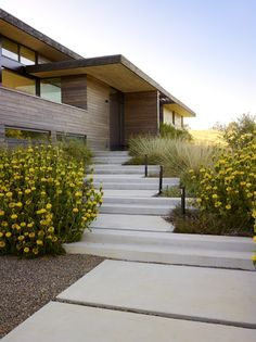 Private Residence Location: Portola Valley, Ca Architect: Feldman Architecture Photography: Marion Brenner Landscape Stairs, Landscape Design, Garden Design, House Design, Portola Valley, Landscape Arquitecture, Welcome To My House, Modern Landscaping, Landscaping Software