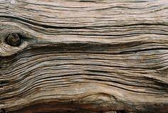 layered wood