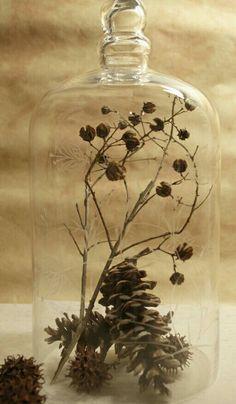 Glazen stolp met herfsttakken en dennenappels