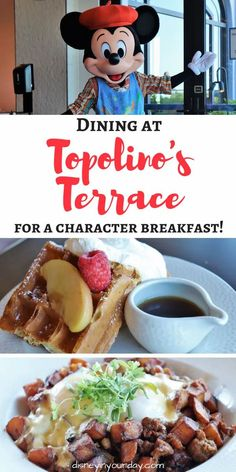 Topolino's Terrace character breakfast - is it worth it? A look at the food, character interactions and experiences, and more! Topolino's Terrace is located at the Riviera Resort in Walt Disney World and has a character meal for breakfast and is a regular table service restaurant for dinner. Walt Disney World Orlando, Disney World Secrets, Disney World Hotels, Disney World Food, Disney World Restaurants, Disney Nerd, Disney World Planning, Disney World Tips And Tricks, Disney Tips