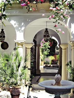 Andalusian patio, Spain.  http://www.costatropicalevents.com/en/costa-tropical-events/andalusia/welcome.html