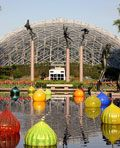 Missouri Botanical Garden and Chihuly glass art