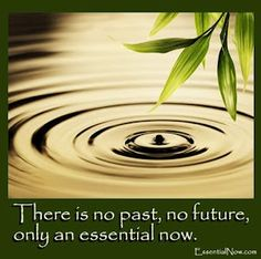 Nothing in the past is lost for it, for the Idea is ever present;   Spirit is immortal; with it there is no past, no future, but an essential now...   what Spirit is it has always been essentially;   distinctions are only the development of this essential nature.