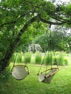 Wonderful Tree Swings For A Better Enjoyment