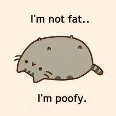 poofy pusheen :D