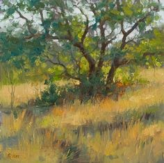 Winter Grasses by Robert Rohm Oil ~ 18 x 18