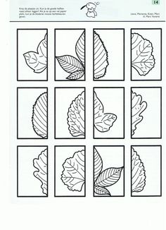 Autumn leaves - cut and paste. Autumn Crafts, Autumn Art, Autumn Theme, Autumn Leaves, Symmetry Activities, Autumn Activities, Fall Preschool, Preschool Activities, Fall Art Projects
