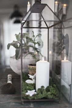 Beautiful. Candle, tree, reindeer & star nestled on moss, perfect!