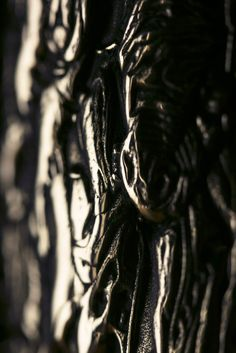 Detail Shot of Bronze Igneous Vessel (2015) by Driaan Claassen