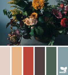 { flora palette } image via: @theflowercult