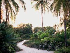 Casa Morada - tropical - landscape - miami - by Raymond Jungles, Inc.