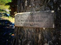 The Bigfoot Trail Alliance joined forces with the Salmon River Restoration Council to hike up Russian Creek in the Russian Wilderness. Crescent City, Bigfoot, Pacific Ocean, Northern California, Hiking Trails, Wilderness, Dog Tag Necklace, National Parks, Walking Paths