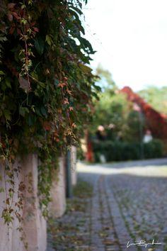 Visby, Gotland (Sweden) Sidewalk, Spaces, Decor, Decoration, Decorating, Walkway, Home Decoration, Deco, Pavement