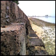beach barrier..my favorite gym equipment piece !