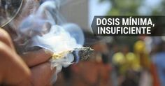 osCurve   Contactos : No será delito portar más de la dosis mínima, si s...
