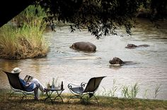 Tinga Lodge consists of 9 luxurious suites guaranteed to leave you feeling rejuvenated and relaxed after just a few short days. Each suite overlooks the river w… Hotel Architecture, Out Of Africa, Game Reserve, Lodges, Continents, Safari, Tourism, Around The Worlds, African