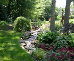 1000 images about shade garden woods edge on pinterest for Landscape plants of the southeast