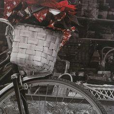 Falikép 69 x 29 - BICYCLE