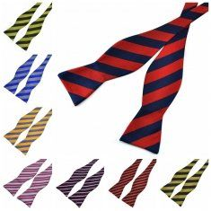 PenSee Men's Bowties Leisure Stripe Paisley Jacquard Woven Silk Neckties Accessory