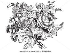 Google Image Result for http://image.shutterstock.com/display_pic_with_logo/53332/53332,1267110350,2/stock-vector-antique-flowers-engraving-scalable-and-editable-vector-illustration-47442100.jpg