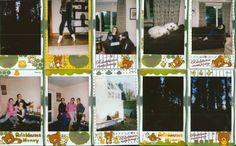 Rilakkuma meets honey instax mini film review Instax Mini Film, Film Review, Rilakkuma, Minis, Photo Wall, Honey, Meet, Baseball Cards, Photography