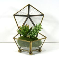Five-sided Faceted Glass and Brass Display Box with by MysticLily