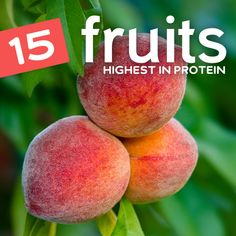 15 Fruits Highest in Protein Protein Diets, Protein Snacks, Healthy Snacks, Healthy Eating, Protein Energy, Protein Sources, Protein Bars, High Protein Fruit, High Protein Recipes
