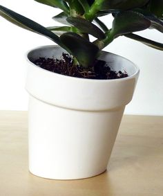 Playful Leaning Pot #illusion #design