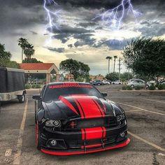 Mustang thunder