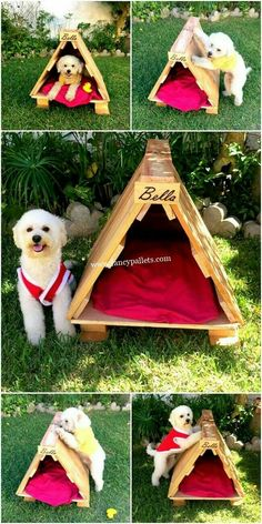 Outdoor dog house for our sweet pup 🥰 he is an inside dog, of course, but we'll be outside most of the day in fall and we want him to be comfy. Pallet Dog House, Pallet Dog Beds, Wood Dog Bed, Diy Dog Bed, Wooden Pallet Shelves, Wood Pallets, Pallet Cupboard Ideas, Cool Dog Houses, Backyard Buildings