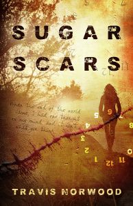 Sugar Scars by Travis Norwood is an amazing post apocalyptic novel that concentrates on the survival on one nineteen year old girl, with diabetes. Signs Of Diabetes, Type 1 Diabetes, Puppy Stages, Adventure Cat, Ad Of The World, Diabetes In Children, Happy Puppy, Diabetes Management, Staying Alive
