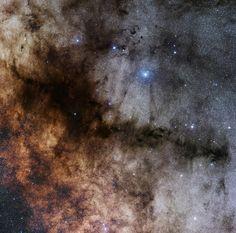 Темная туманность Трубка (Barnard 59, 65-67 и 78) в созвездии Змееносца