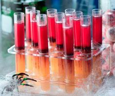 24 CLEAR TEST TUBE TUBES SHOTS SHOOTERS AND RACK