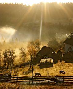 Pastoral farm scene.