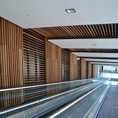 Ceiling Panels: Lauder Linea (Acoustic Products)