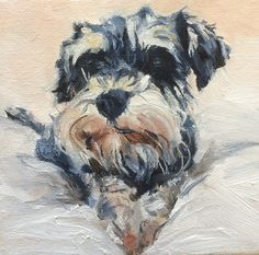 Schnauzer by Julie Brunn For more great pins go to @KaseyBelleFox