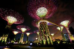 -Gardens by the Bay-Singapore